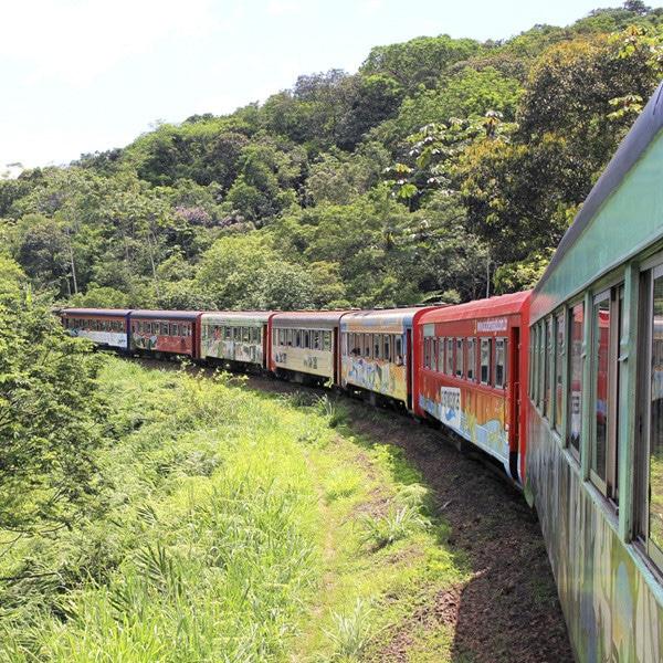 passagem do trem turístico